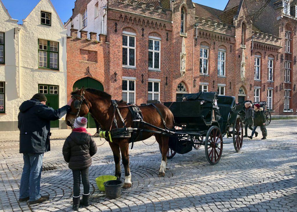 Calèches à Bruges Belgique