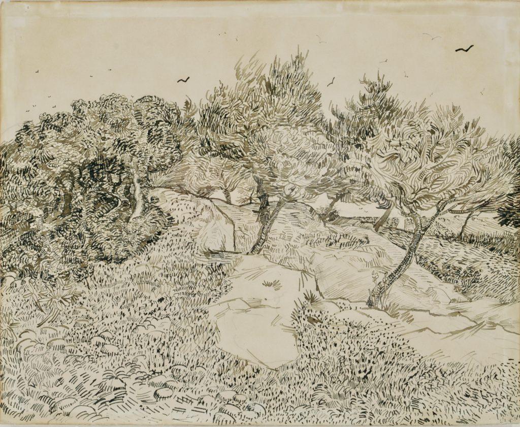 Les Oliviers a Montmajour Vincent Van Gogh musée Beaux-Arts Tournai Belgique