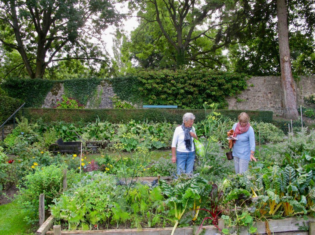 Jardin potager au Jardin des ifs Gerberoy Oise