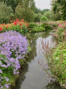 Jardin André van Beek - vue bassin