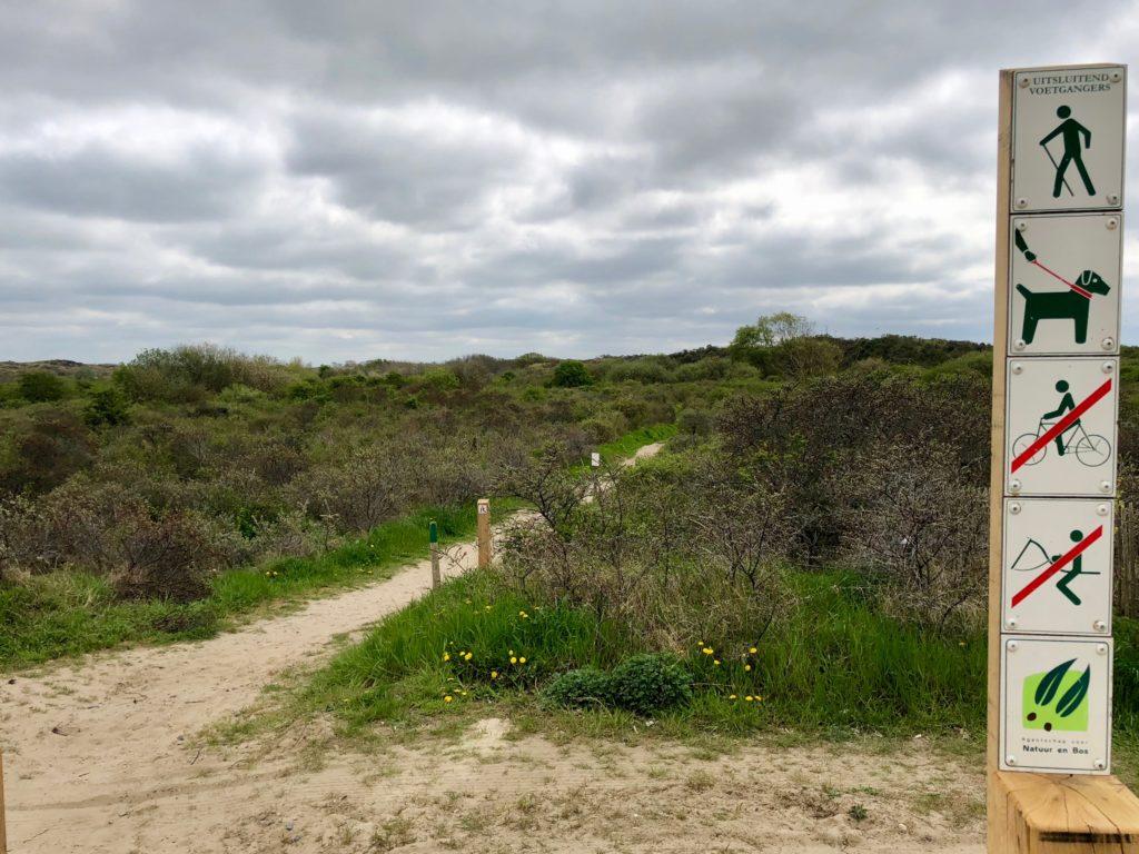 Début sentier réserve naturelle Westhoek La Panne Belgique