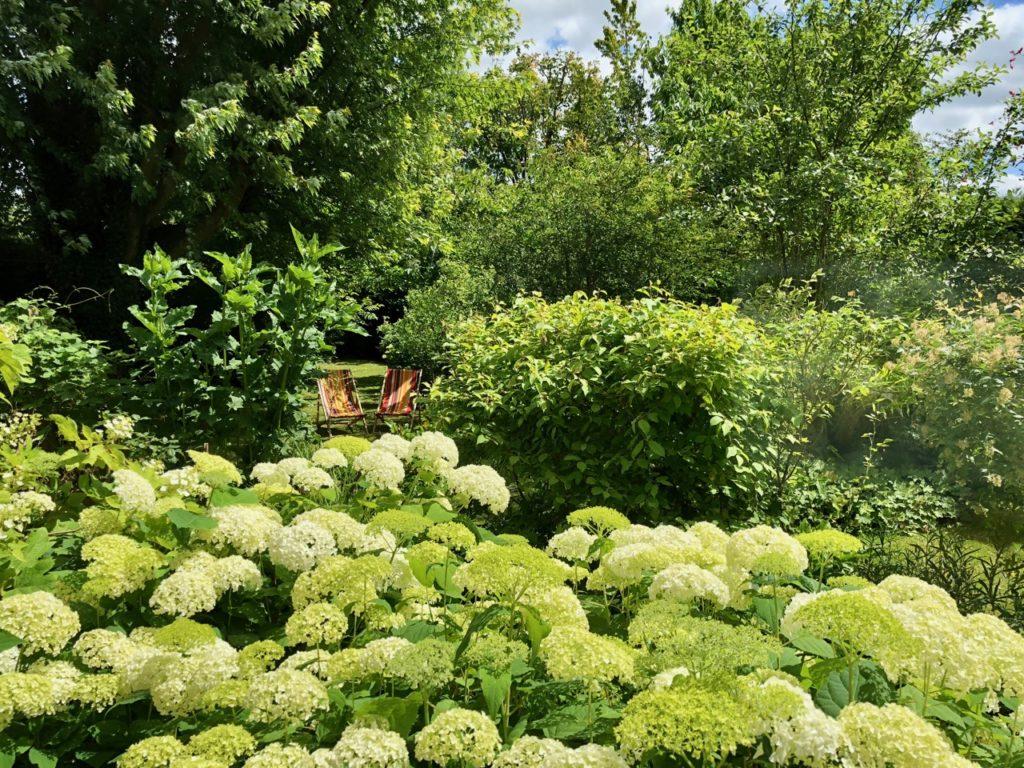 Godewaersvelde Monts et Merveilles jardin avec transats