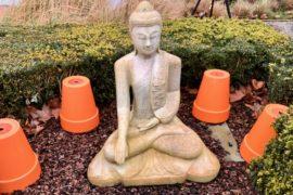 Thermen-R-Roeselaere-statue-bouddha-jardin