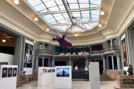 Atrium central du musée des Beaux-Arts de Tournai Belgique