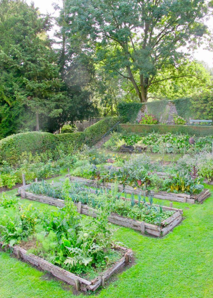 """Potager """"en lasagnes"""" au Jardin des ifs Gerberoy Oise"""