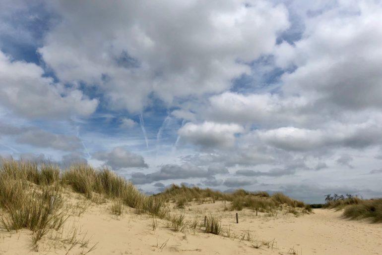 Dunes réserve naturelle du Westhoek La Panne Belgique