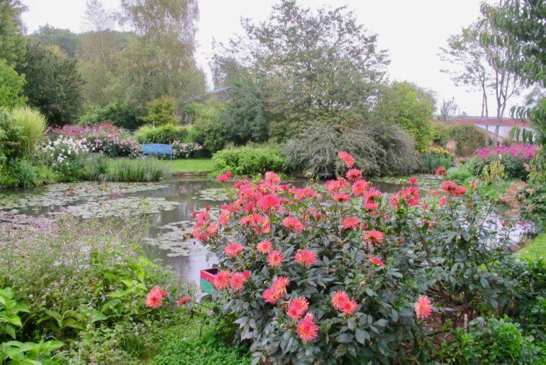 Jardin André van Beek - dahlias au premier plan