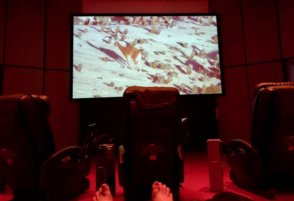Thermae 2000 Pays-Bas cinerelax