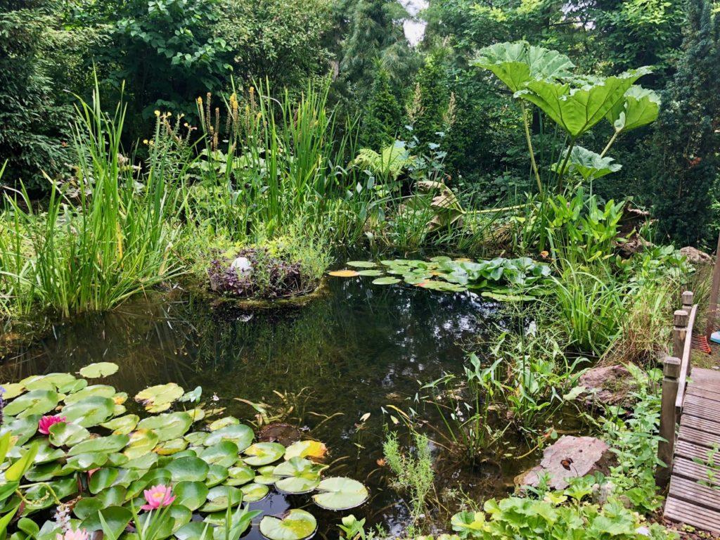 Jardins de Ly à Sénarpont Somme - jardin d'eau