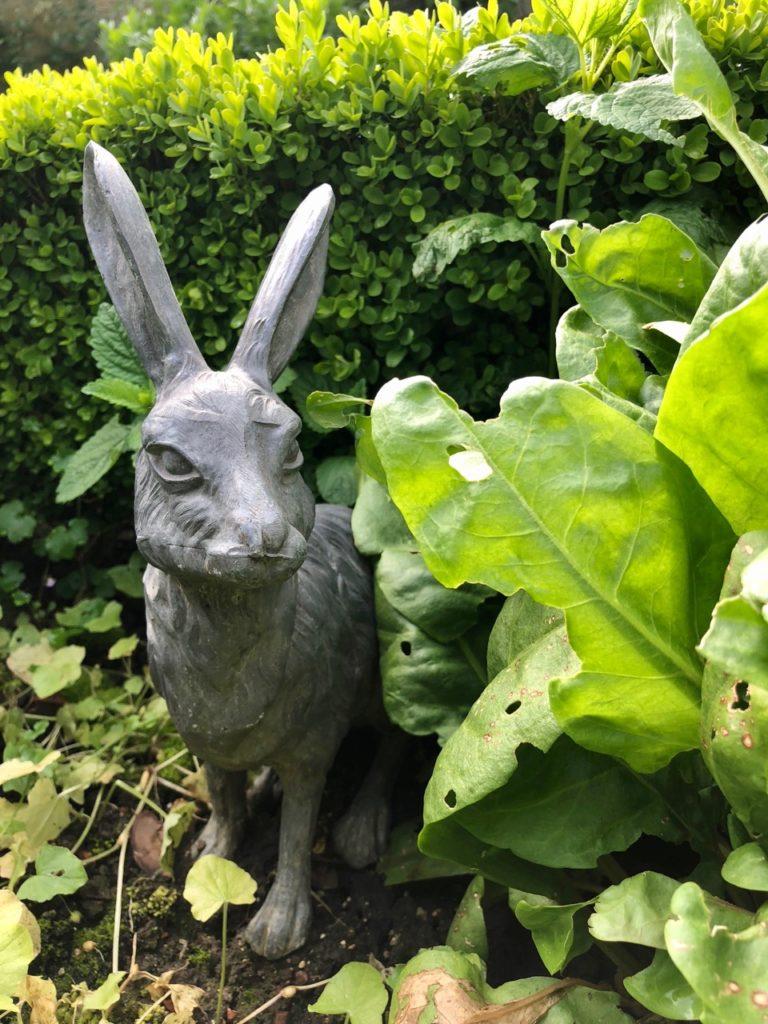 Jardins de Viels-Maisons - lapin