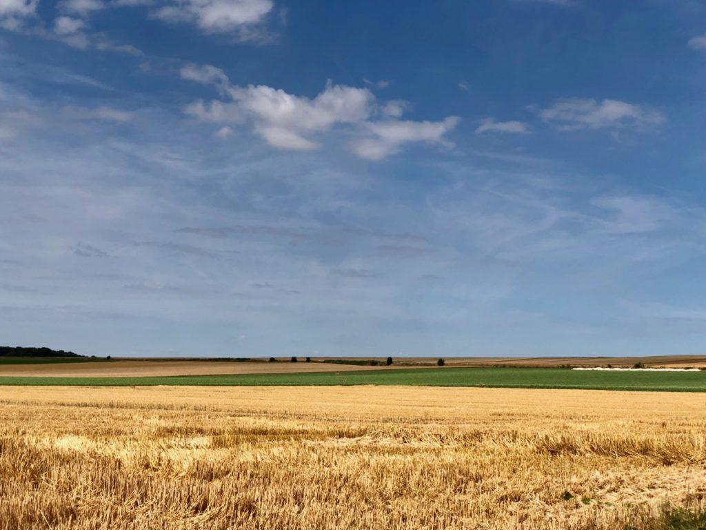 Rando Grand Marais paysage champ juillet