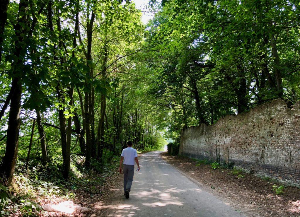 Rando Grand Marais sous bois