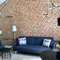 Le Chat qui dort Lille - appartement La Déesse salon