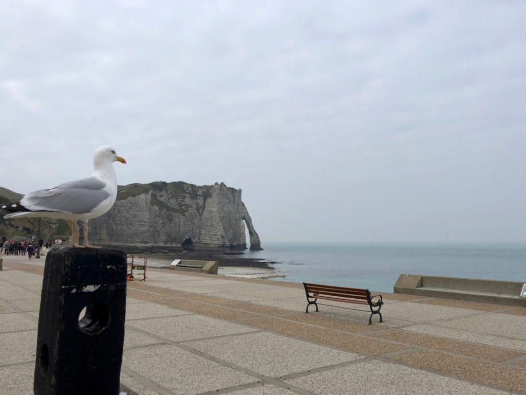 Etretat La Normandie Aussi Impressionnante Que Charmante Plus