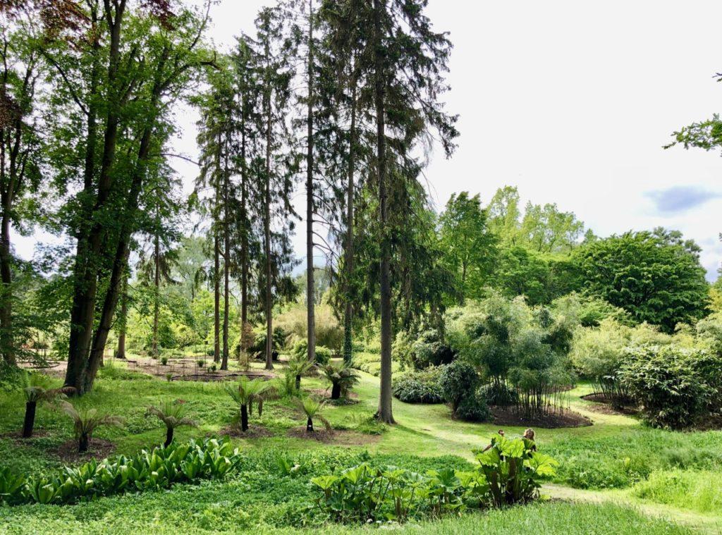 Jardin-botanique-Meise-parc