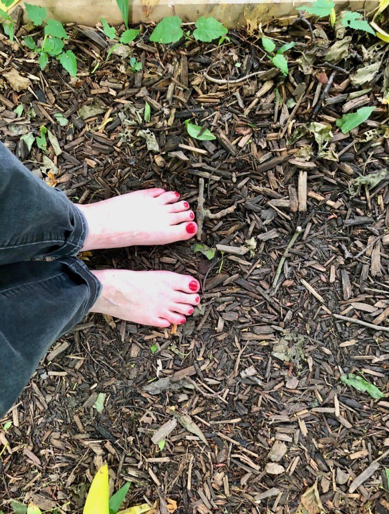 Jardin-botanique-Meise-parcours-surprenez-vos-pieds-depart