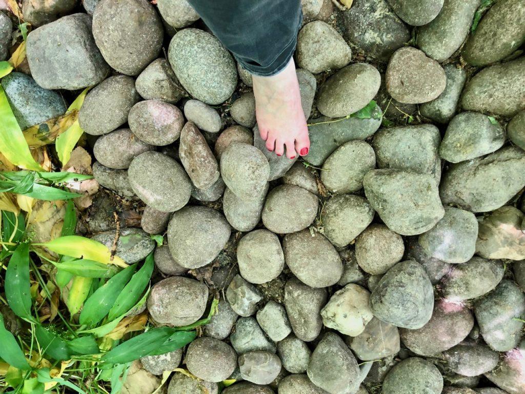 Jardin-botanique-Meise-parcours-surprenez-vos-pieds-gros-cailloux