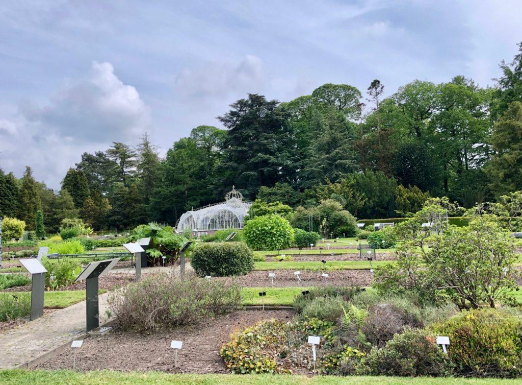 Jardin-botanique-Meise-serre-Balat