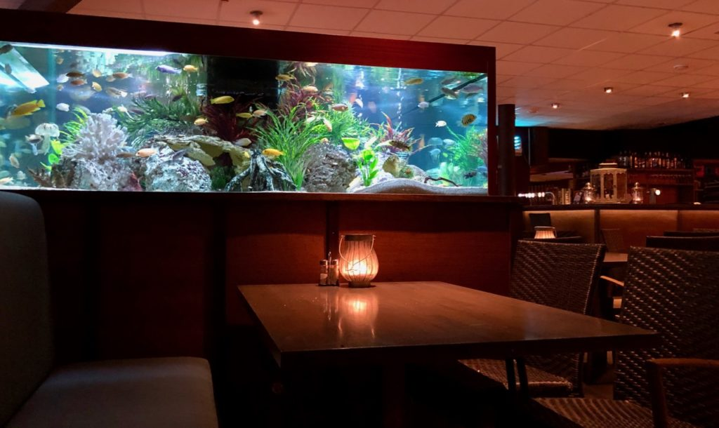 Thermes Dilbeek aquarium restaurant soir