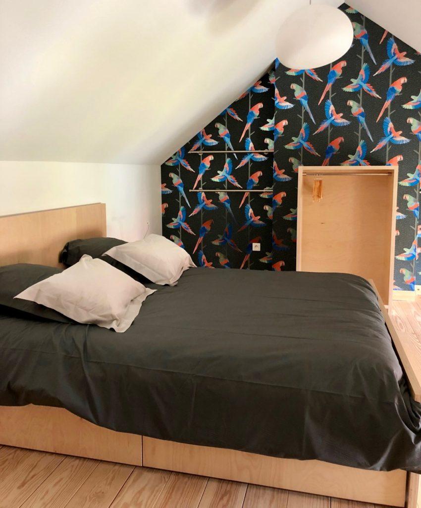 Bruay-Labuissiere-Cite-des-Electriciens-chambre-papier-peint-perroquets