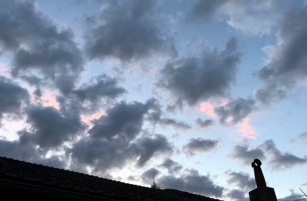 Mon jardin ciel été crépuscule