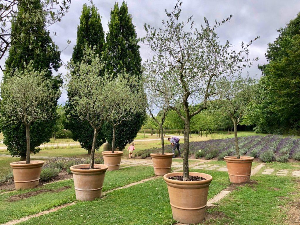 Parc-Mosaic-jardin-italien-bis
