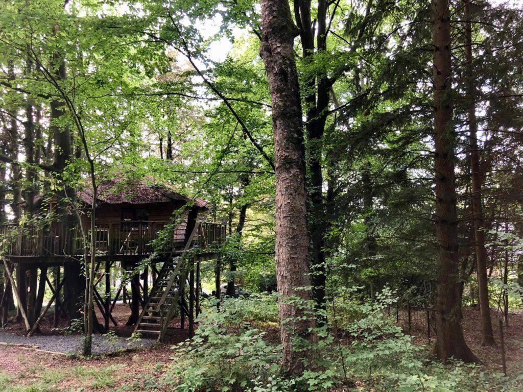 Spa-Le-Bois-Dormant-cabane-de-loin