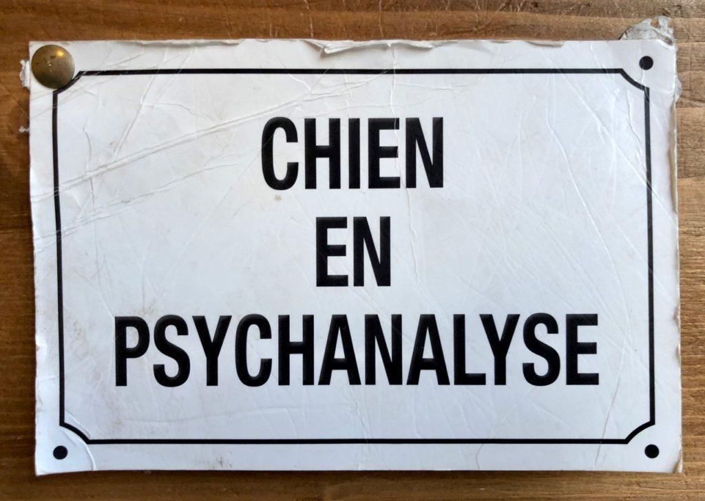 Lille-Le-Waf-affiche-chien-en-psychanalyse