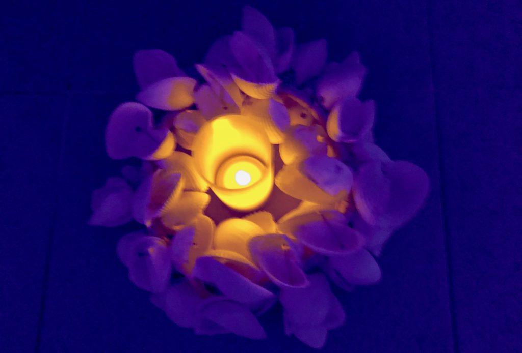 royal-hainaut-spa-valenciennes-fleur-sous-table-massage