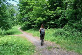 Conde-sur-l-Escaut-balade-sur-le-chemin