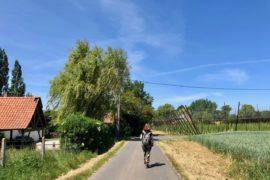Saint-Jans-Cappel-sentier-des-Jacinthes-marcheuse-sac-au-dos