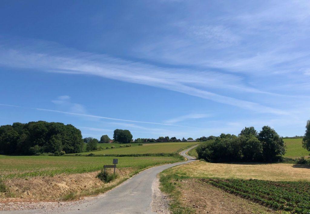 Saint-Jans-Cappel-sentier-des-Jacinthes-paysage