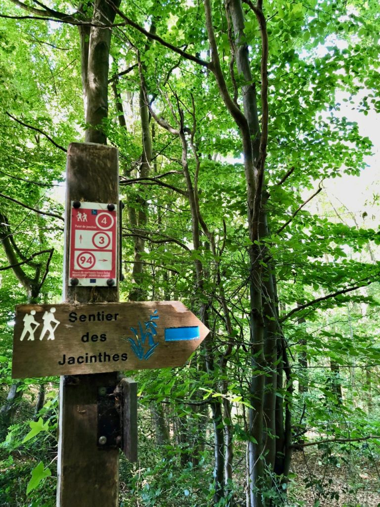 Saint-Jans-Cappel-sentier-des-Jacinthes-sous-bois-panneau
