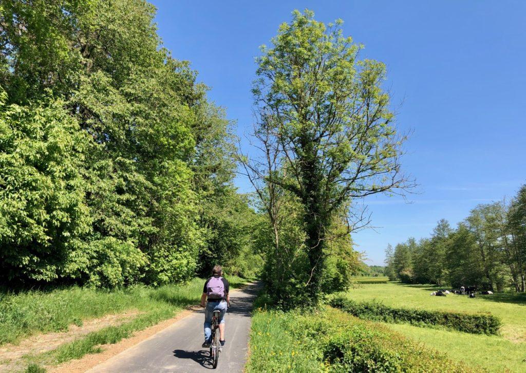 Voie-verte-de-l-Avesnois-cycliste-dans-bocage