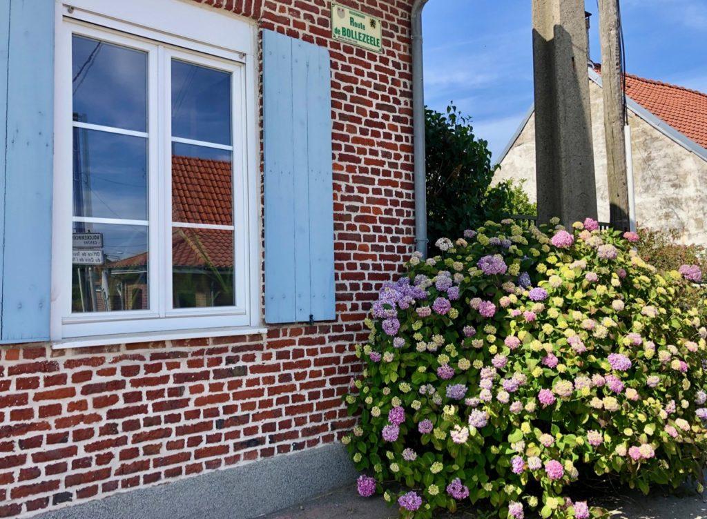 Village Patrimoine Volckerinckhove-Flandre-maison-volets-bleus