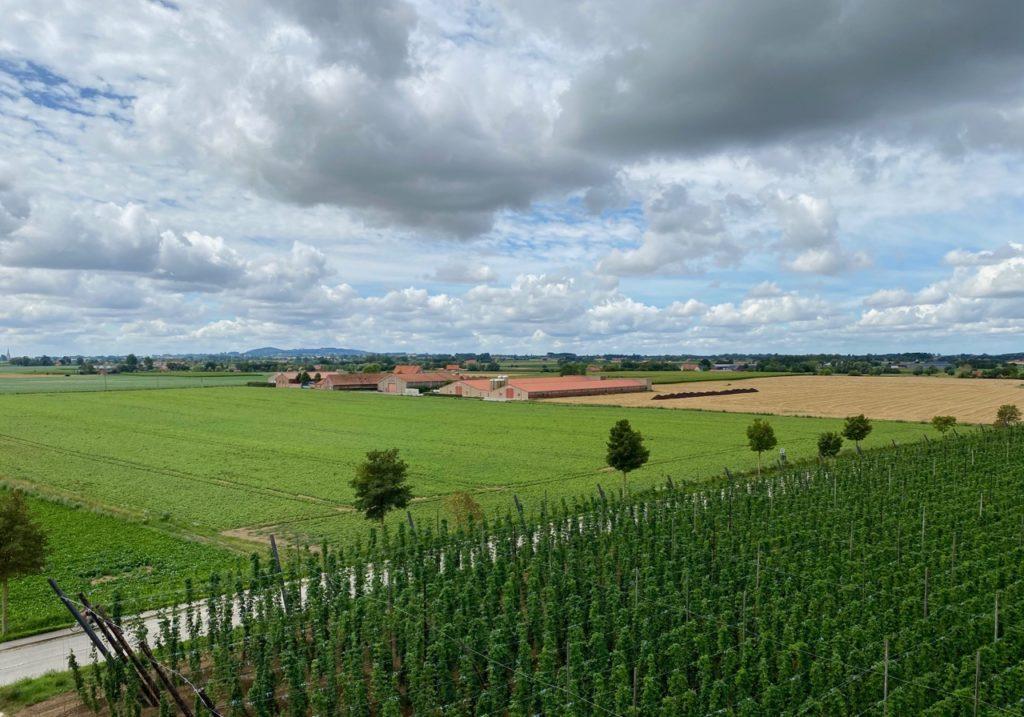 Bar-Bernard-by-St-Bernardus-vue-panoramique