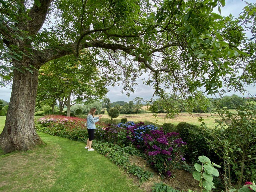 Cassel-Jardin-du-Monts-des-Recollets-hortensias-mauves-grand-angle