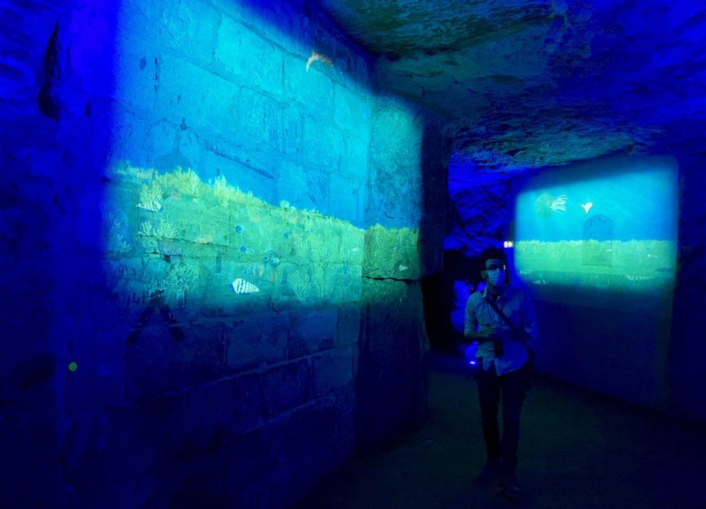 Laon-souterrains-murs-illumines