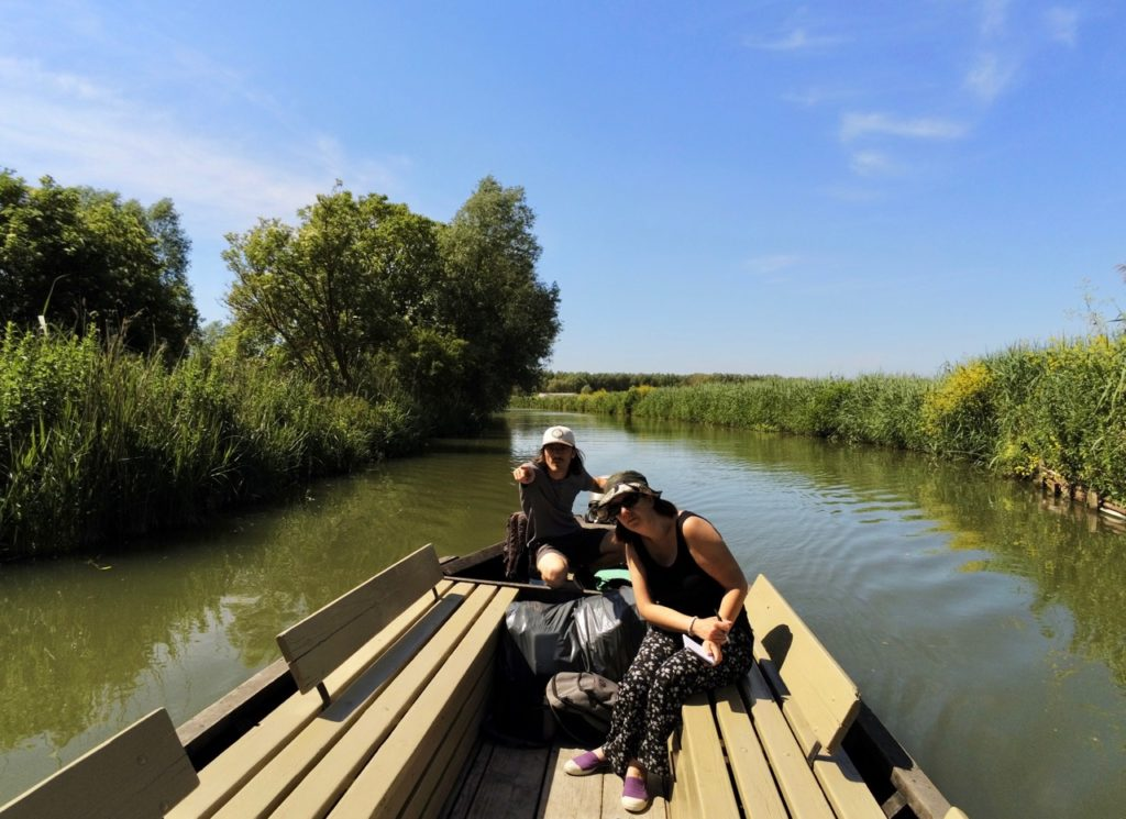 Marais audomarois Isnor bacove vue de pres