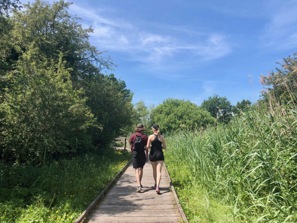 Marais-audomarois-Isnor-marais-du-romelaere-deux-promeneurs-chemin-bois