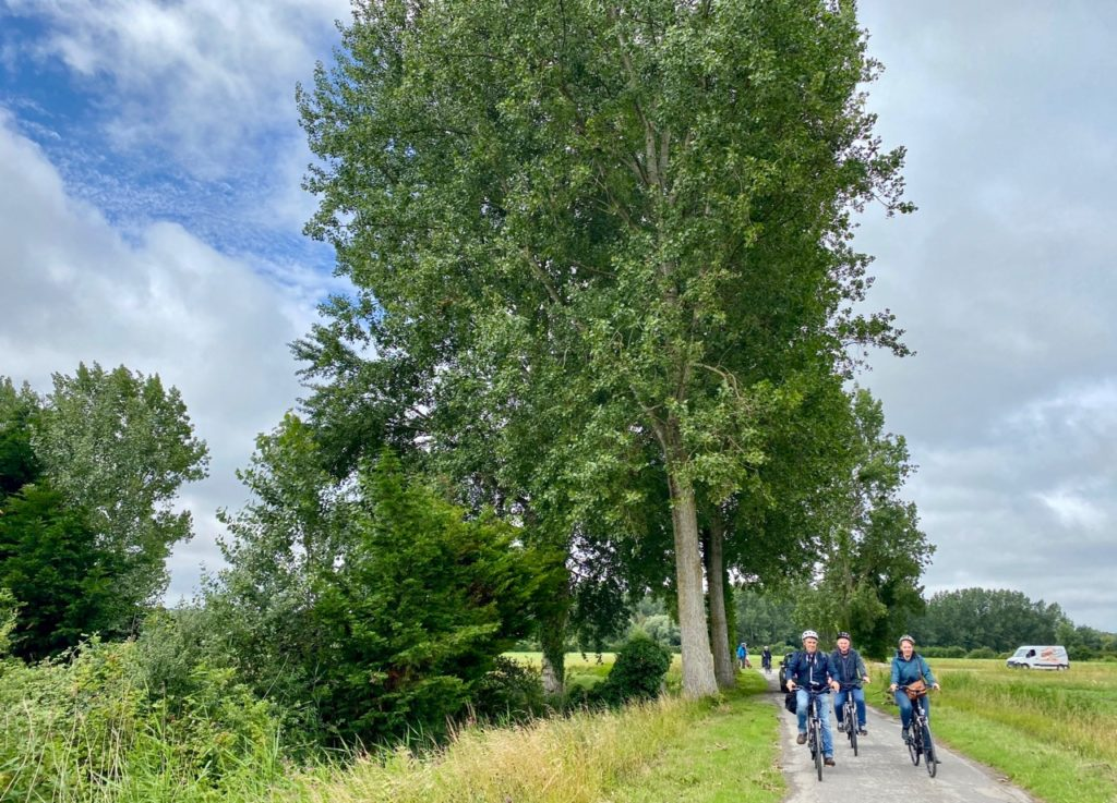 Montreuil-sur-Mer-diner-insolite-balade-velo-nature