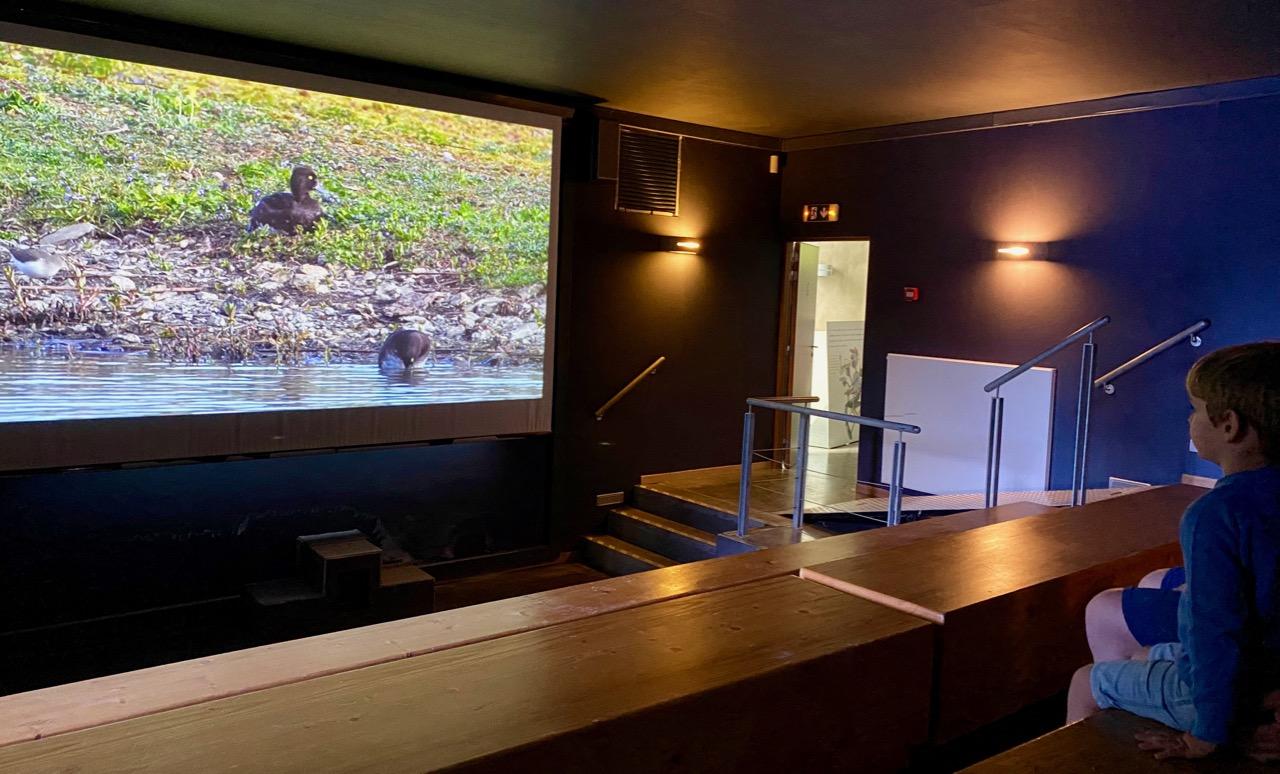 Pays-des-Lacs-Lacs-Aquascope-Virelles-cinema