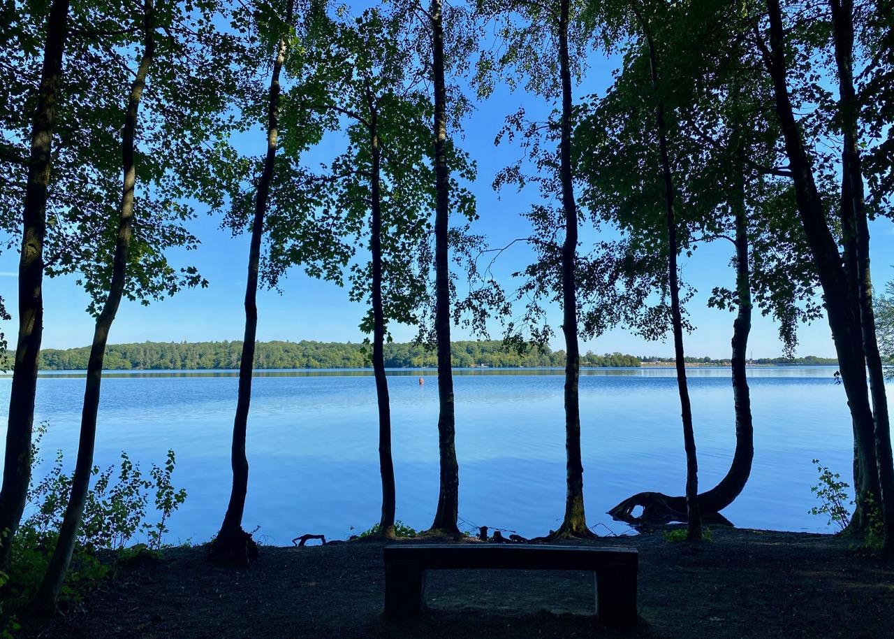 Pays-des-Lacs-Lacs-de-l-Eau-d-Heure-avec-arbres-sombres