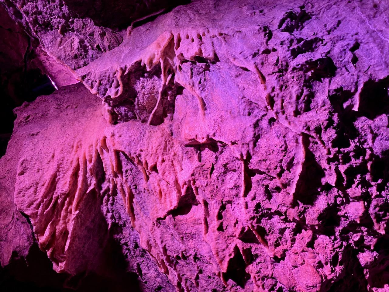 Pays-des-Lacs-Les-Grottes-de-Neptune-en-fuchsia
