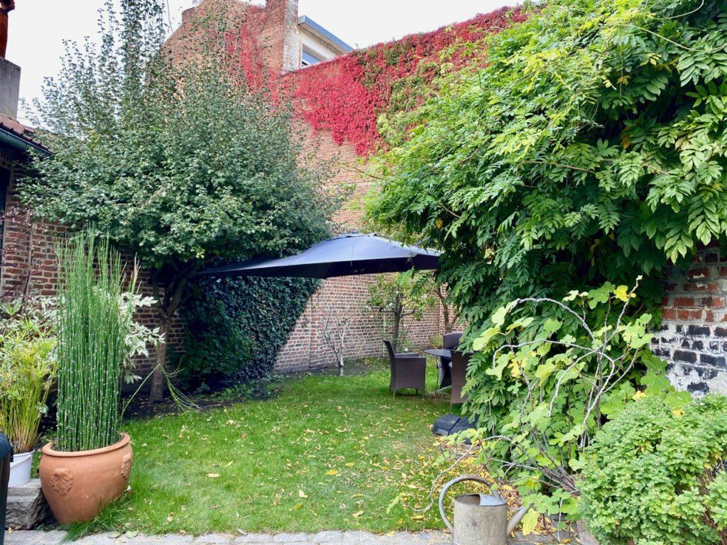 Mon-jardin-avant