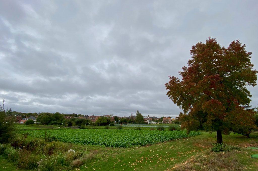 Week-end-Amiens-Au-Jardin-sur-l-eau-verger