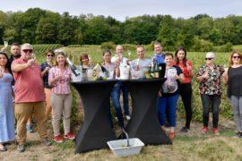 Champagne en Hauts de France