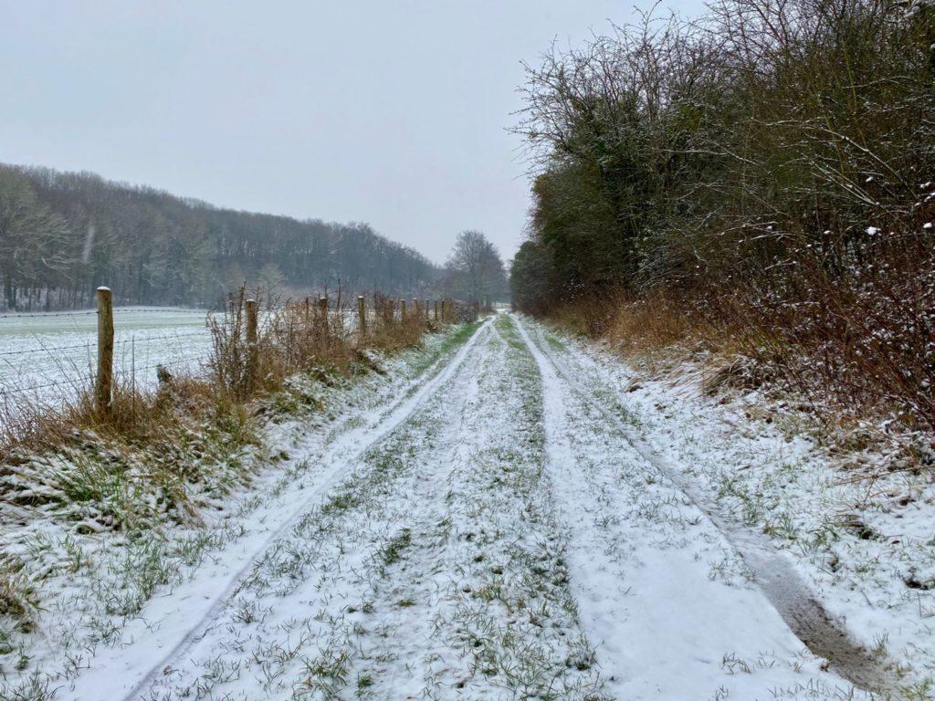 Chemin-sous-la-neige