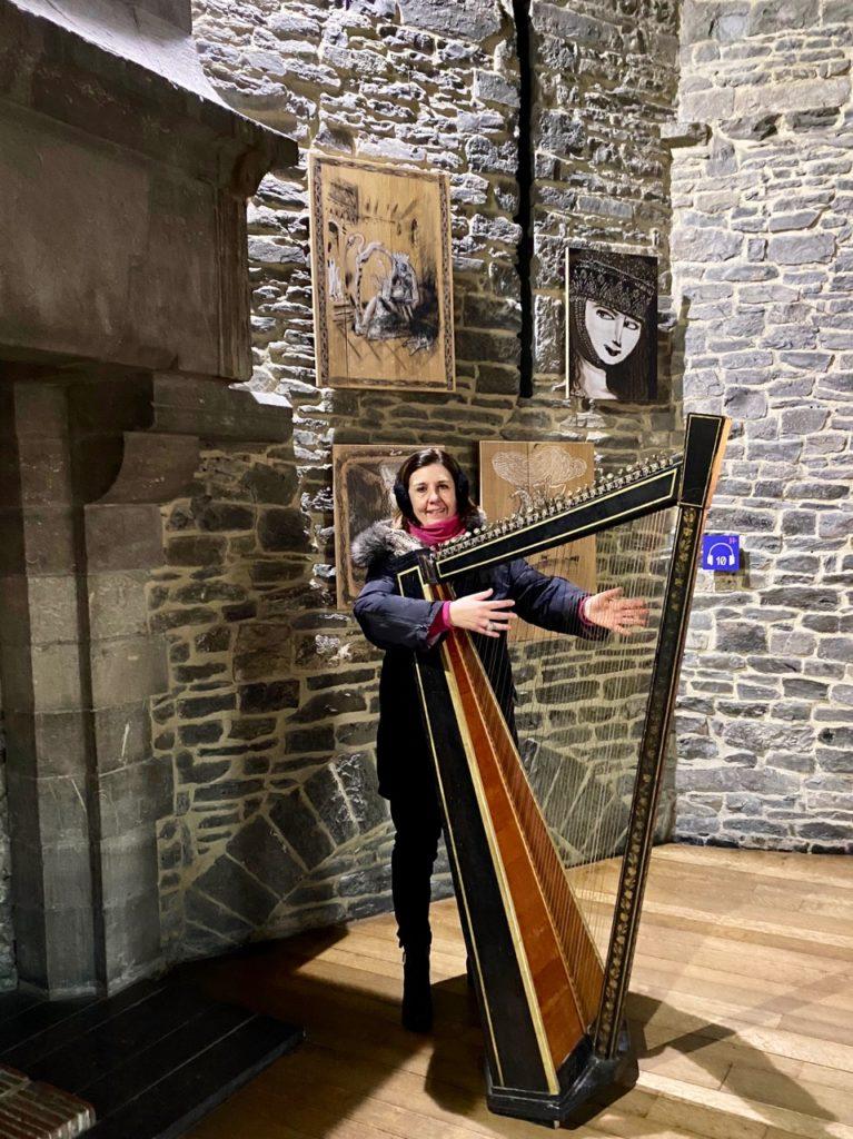 Gand-chateau-des-Comtes-harpe