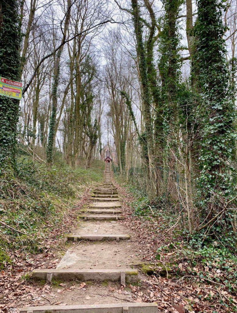 Bois-de-Cise-montee-vers-eglise-sainte-Edith